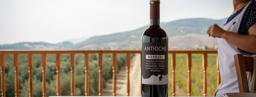 Antioche Winery